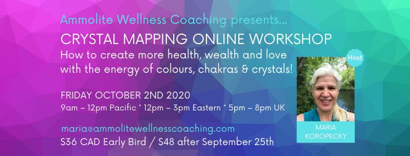 Crystal Mapping workshop October.